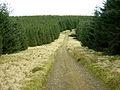 Southern Upland Way at Black Burn - geograph.org.uk - 158417.jpg