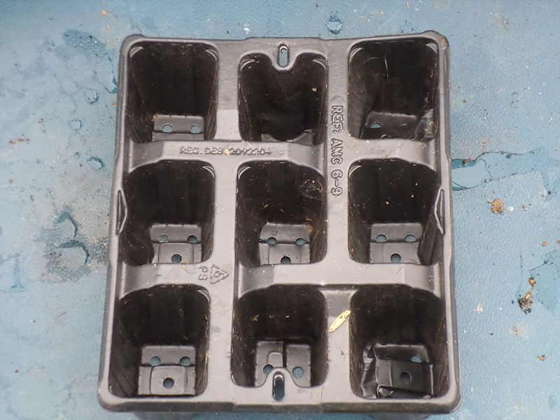 File:Sowing tray 3x3.JPG
