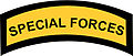 Special Forces Shoulder Sleeve Insignia.jpg