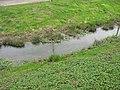 Střížovice (Snědovice), potok.jpg