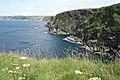 St Endellion, above Cartway Cove, Port Gaverne - geograph.org.uk - 850848.jpg