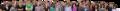 Staff banner waist 800x75.png