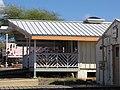 Starr-091221-0750-Cordia subcordata-habit and new volunteer hut-Honokanaia-Kahoolawe (24874538562).jpg