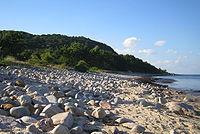 Stenshuvud, stranden.jpg
