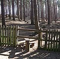 Stile into New Wavendon Heath - geograph.org.uk - 367435.jpg