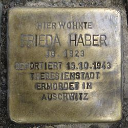 Photo of Frieda Haber brass plaque
