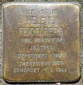 Stumbling block for Helene Feidelberg (Humboldtstr. 42)