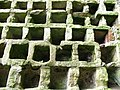 Stone nests, Hailes Castle doocot - geograph.org.uk - 363723.jpg
