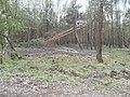 Strooigebied - panoramio.jpg