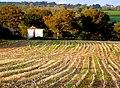 Stubble Field at Broadoak - geograph.org.uk - 1560726.jpg