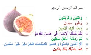 At-Tin - At-Tin (the fig), 95th sura of the Quran.