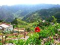 Teneriffa – Mercedeswald – Anaga – Taborno - Richtung Afur und Roque Negro - panoramio (1).jpg