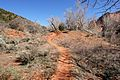 The 13 mile return trail, Kolob Canyons, Walk to the Kolob Arch (Zion National Park) (3440107772).jpg