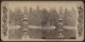 The Binnen Bridge and Cascade, Prospect Park, Brooklyn, N.Y, from Robert N. Dennis collection of stereoscopic views.png