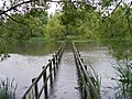 The Bridge - geograph.org.uk - 1147023.jpg