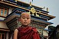 The Buddha Monk.jpg
