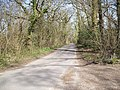The Lane from Rodlease House to The Old Mill House - geograph.org.uk - 395934.jpg