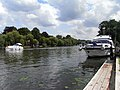 The River Thames, Cookham - geograph.org.uk - 1561821.jpg