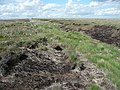 The boundary trench, Wham Head, Marsden - geograph.org.uk - 929965.jpg