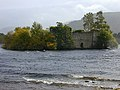 The castle on the island, Loch an Eilein - geograph.org.uk - 1713603.jpg