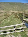 The leat footpath - geograph.org.uk - 424807.jpg
