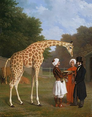 Jacques-Laurent Agasse - The Nubian Giraffe, by Jacques-Laurent Agasse (c.1827), depicts one of the three giraffes sent to Europe by Mehmet Ali Pasha (another was Zarafa). This one was received by George IV in London. The gentleman shown in the top hat is Edward Cross, operator of the menagerie at Exeter Exchange and then Royal Surrey Gardens. Agasse painted many other animals from his collection.