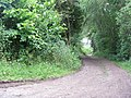 The road from Boghall - geograph.org.uk - 1419354.jpg