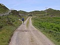 The road to the lighthouse - geograph.org.uk - 1394327.jpg