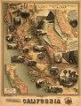 The unique map of California. LOC 99446216.tif