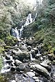 Torc waterfall - geograph.org.uk - 777111.jpg