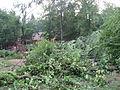 Tornadoschaden Vogelpark Hambrücken.jpg