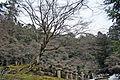 Tottori feudal lord Ikedas cemetery 092.jpg