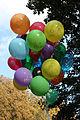 Toy balloons 2011 G2.jpg