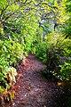 Trail around Lake Marie in Umpqua Lighthouse State Park.jpg