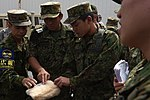 Training how you fight 170518-F-VN140-052.jpg