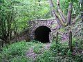 Tramway tunnel at Point Quarry Sidings - geograph.org.uk - 426604.jpg