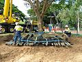 Tree transplanting in Australia.jpg