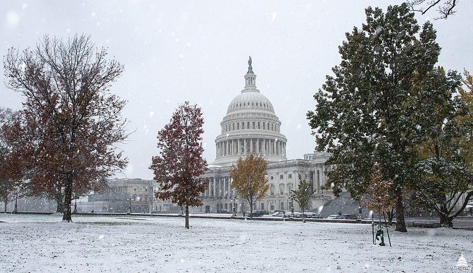 U.S. Capitol Snow 2018 (32026277508)