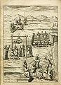 UB Maastricht - Trigault 1624 - p 368.jpg