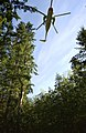US Navy 030922-N-6436W-005 conduct rescue exercises in the foothills of the North Cascade Mountains.jpg
