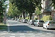 Typische Wohnstraße am Bindermichl im Stadtteil Waldegg.