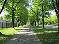 Uzvaras bulvaris - aleja - panoramio (6).jpg