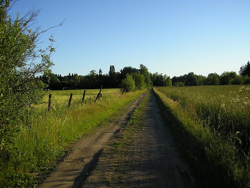 File:Vääräkalliontie, Noppo (07-2008) - panoramio.jpg