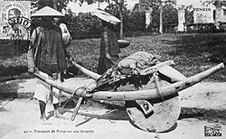 Vietnam Wheelbarrow.jpg