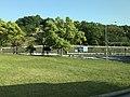 View near Mukaishima Interchange.jpg