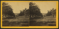 View of 3rd St. taken from the west, Muscatine, Iowa, from Robert N. Dennis collection of stereoscopic views.png