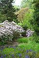 View of Longwood Gardens - DSC00763.JPG