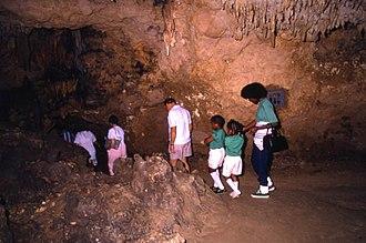 North Florida - In North Florida is Florida Caverns State Park, Marianna, Florida.