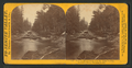View on Merced River, near the Bridal Veil Fall, Yo-Semite Valley, Mariposa county, by Lawrence & Houseworth.png
