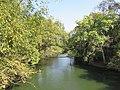 Views from Cauvery Nisargadhama (1).jpg